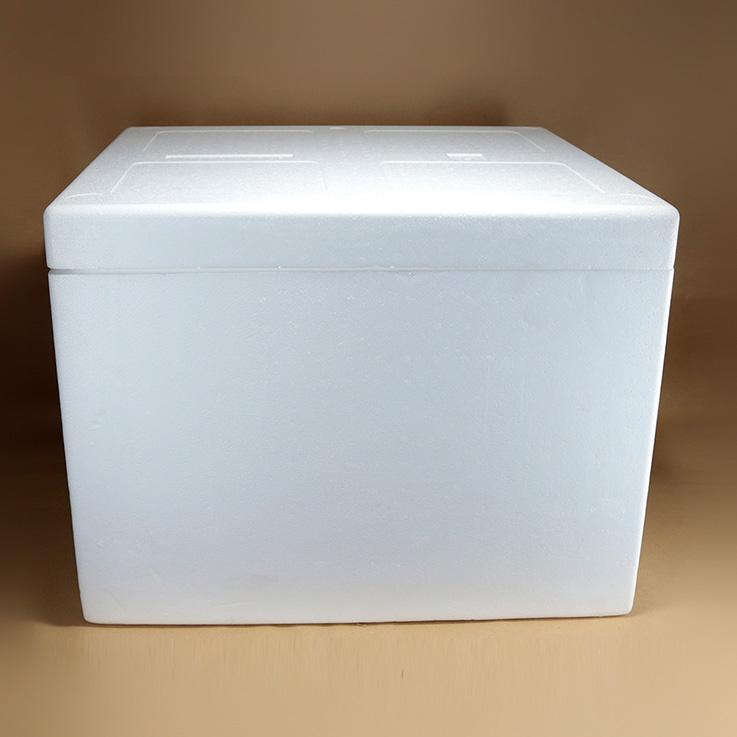 CONSERVADORA ICE BOX Nº21 67L XUNID.